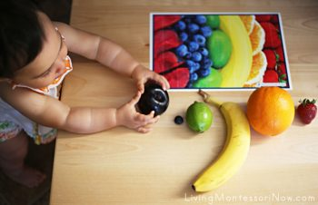 Exploring Fruits at 9½ Months
