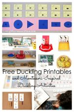 Free Duckling Printables and Montessori-Inspired Duckling Activities