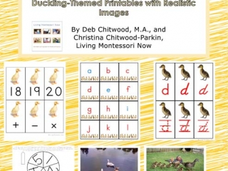 Montessori-Inspired Duckling Pack