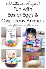 Montessori-Inspired Fun with Easter Eggs and Oviparous Animals