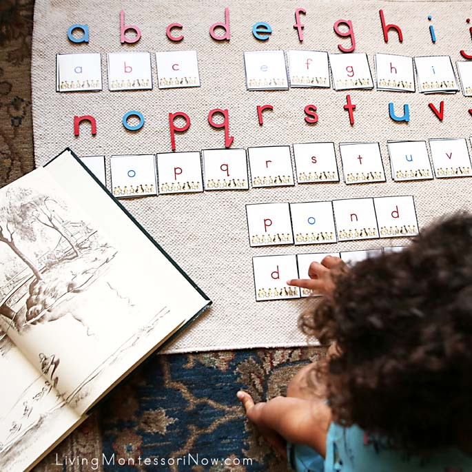 "Movable Alphabet Spelling and Reading Words ""Pond"" and ""Duck"" to Go with Make Way for Ducklings"