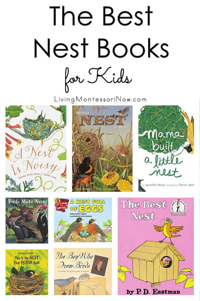 The Best Nest Books for Kids