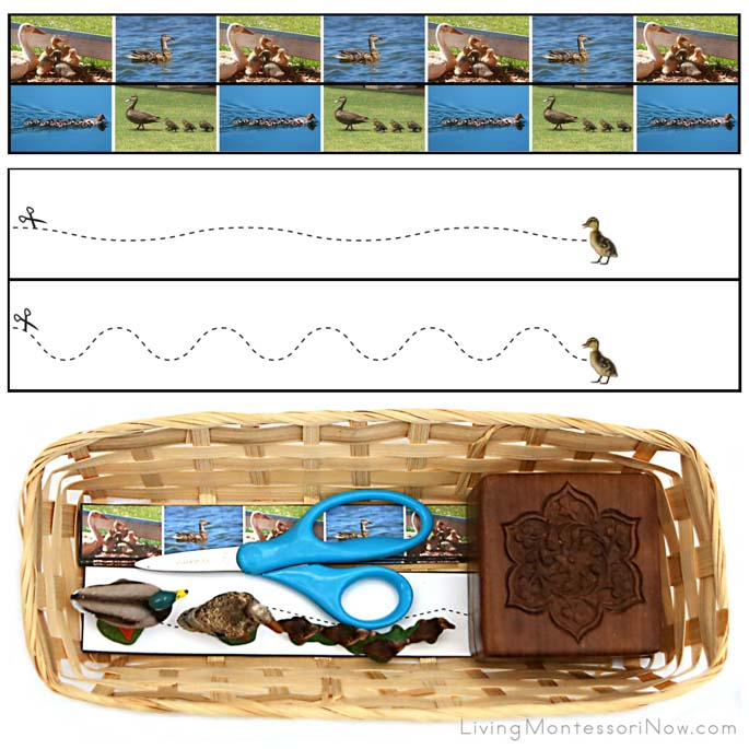 Duckling Cutting Strips with Basket