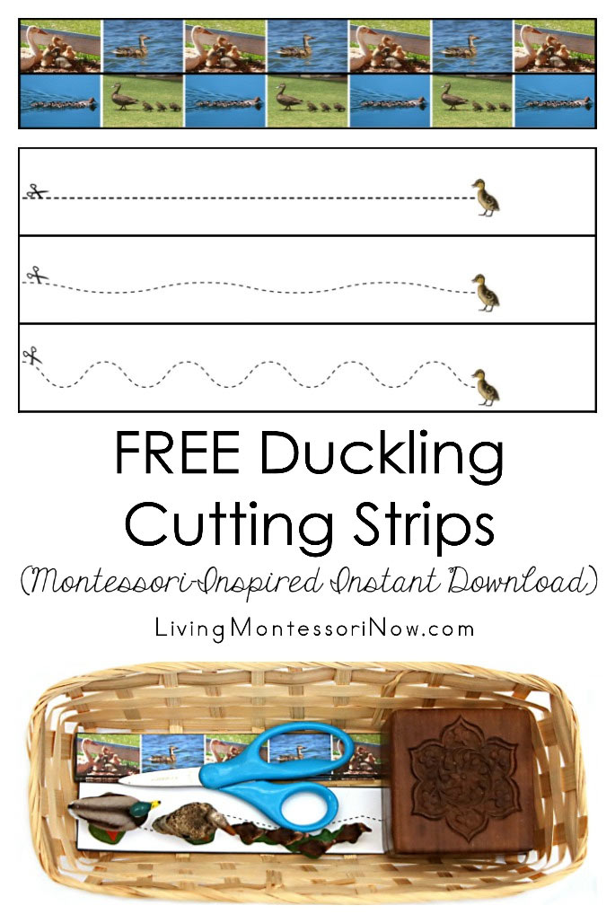 Free Duckling Cutting Strips (Montessori-Inspired Instant Download)