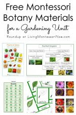 Free Montessori Botany Materials for a Gardening Unit