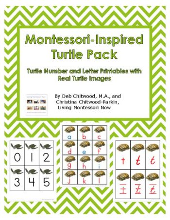 Montessori-Inspired Turtle Pack