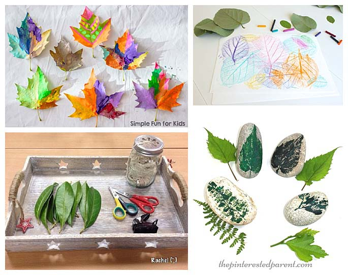 Nature Activities Using Leaves