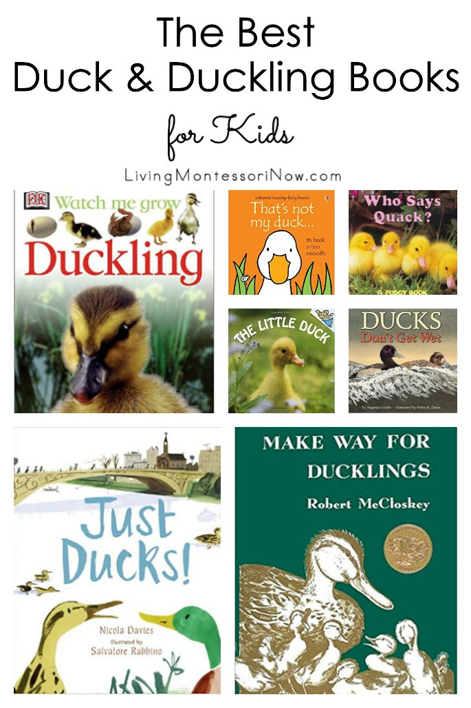 The Best Duck and Duckling Books for Kids