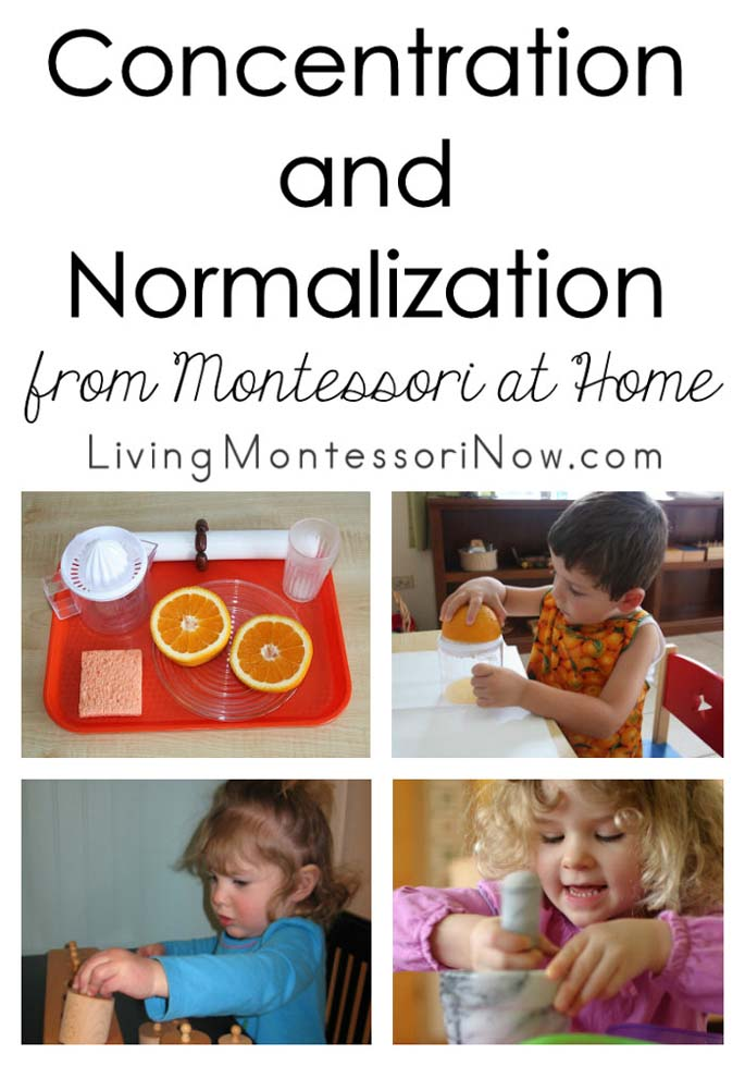 Concentration and Normalization from Montessori at Home