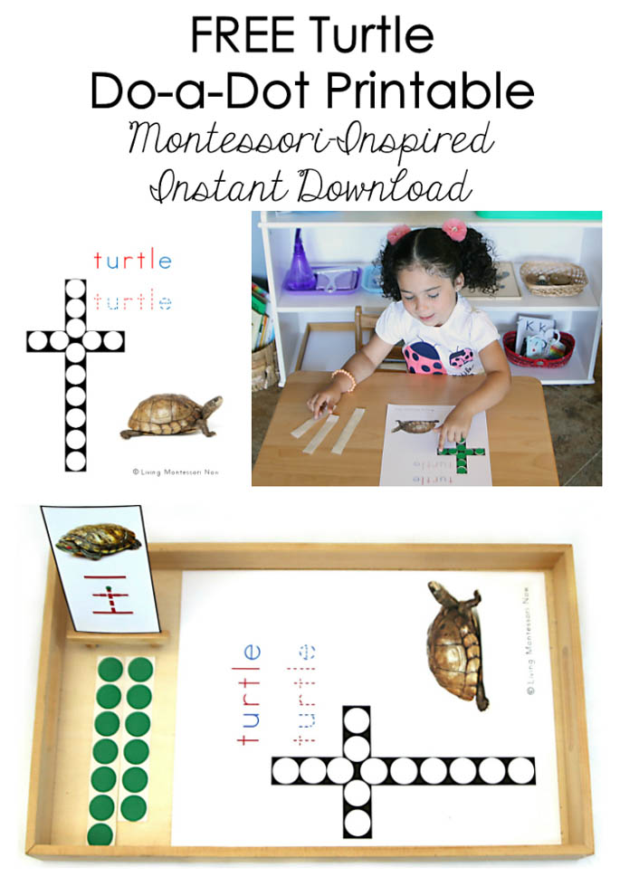 FREE Turtle Do-a-Dot Printable (Montessori-Inspired Instant Download) – Montessori Monday