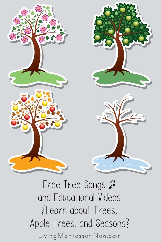 Free Tree Songs and Educational Videos {Learn about Trees, Apple Trees, and Seasons}