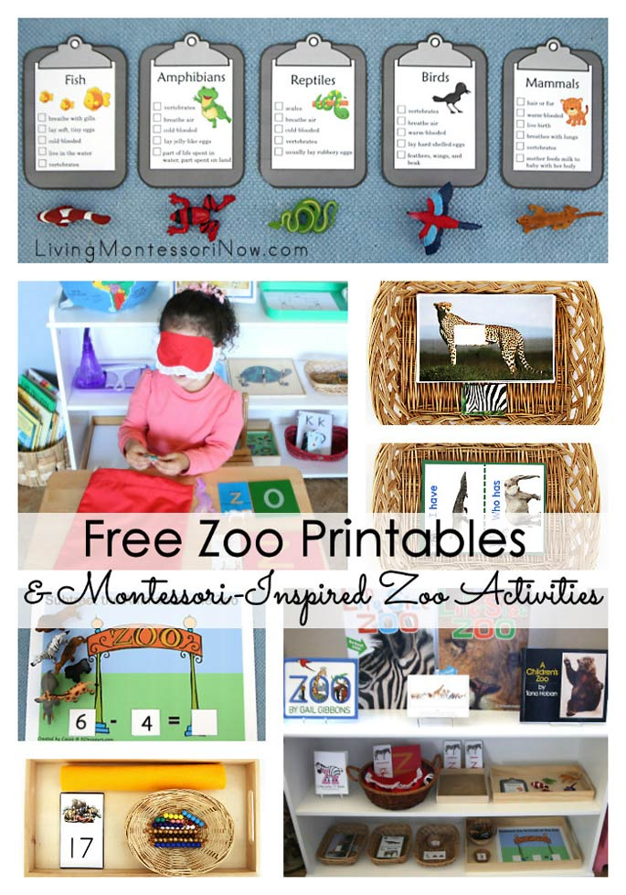 Free Zoo Printables and Montessori-Inspired Zoo Activities – Montessori Monday