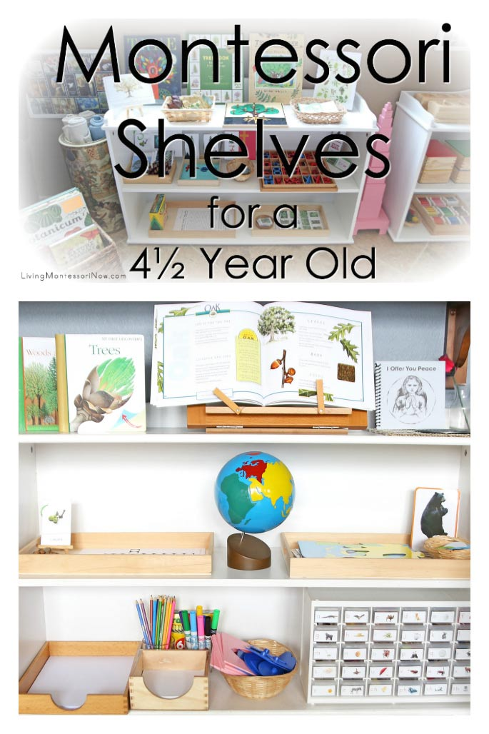 How to Prepare Montessori Shelves for a 4½ Year Old