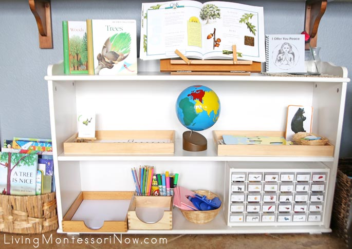Montessori Language and Cultural Shelves During a Tree Unit