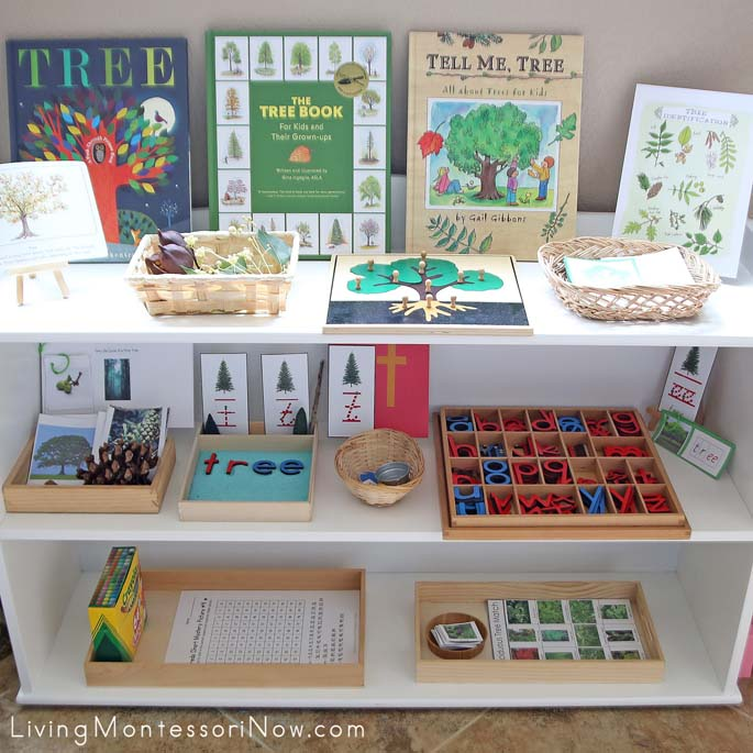 Montessori Tree-Themed Shelves
