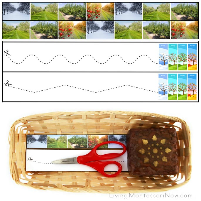 Seasons of an Apple Tree Cutting Strips with Basket