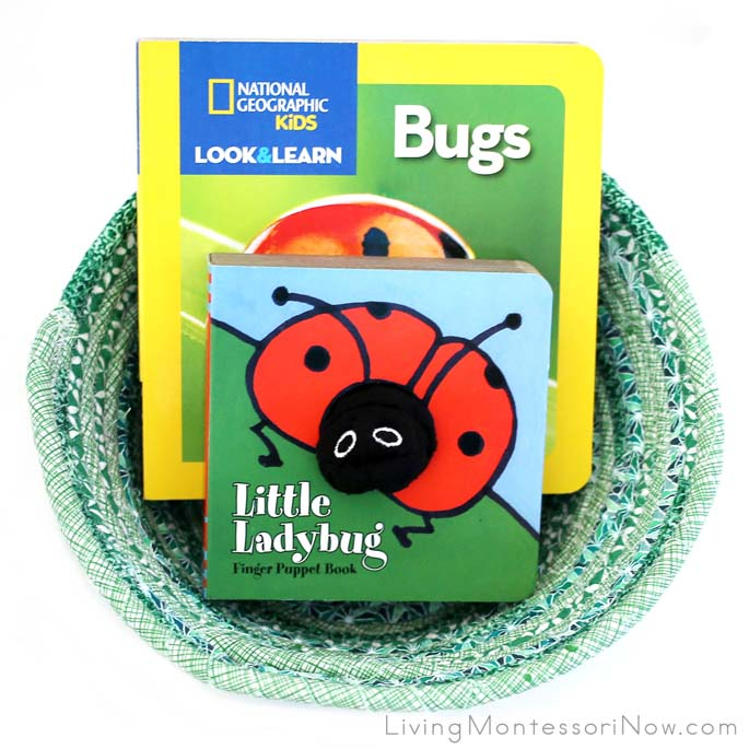 Ladybug Book Basket for Babies and Toddlers