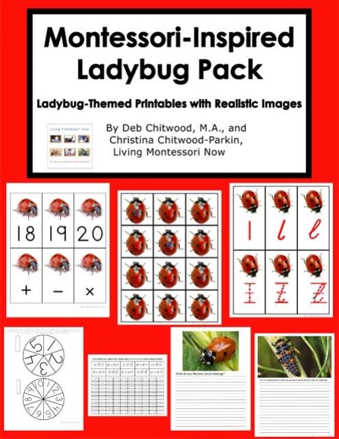 Montessori-Inspired Ladybug Pack