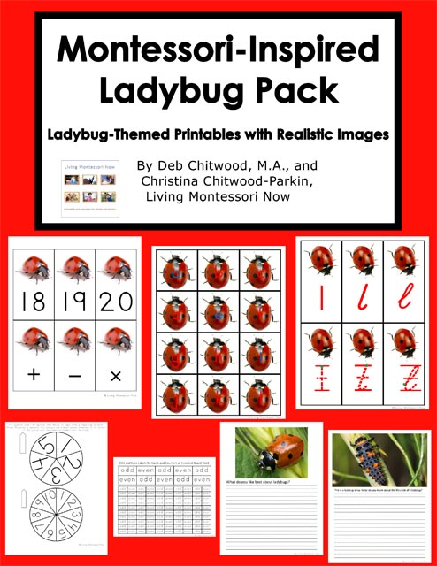 Montessori-Inspired Ladybug Unit with Free Printables and