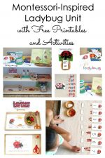 Montessori-Inspired Ladybug Unit with Free Printables and Activities