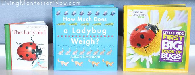 Montessori Shelf with Books for a Ladybug Unit