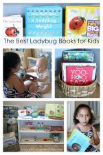 The Best Ladybug Books for Kids