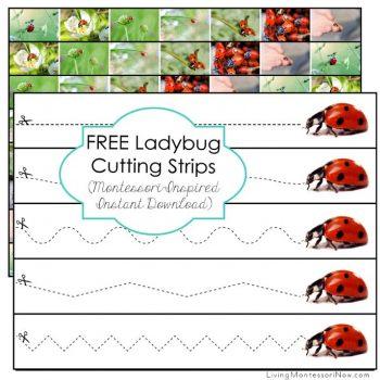 Free Ladybug Cutting Strips
