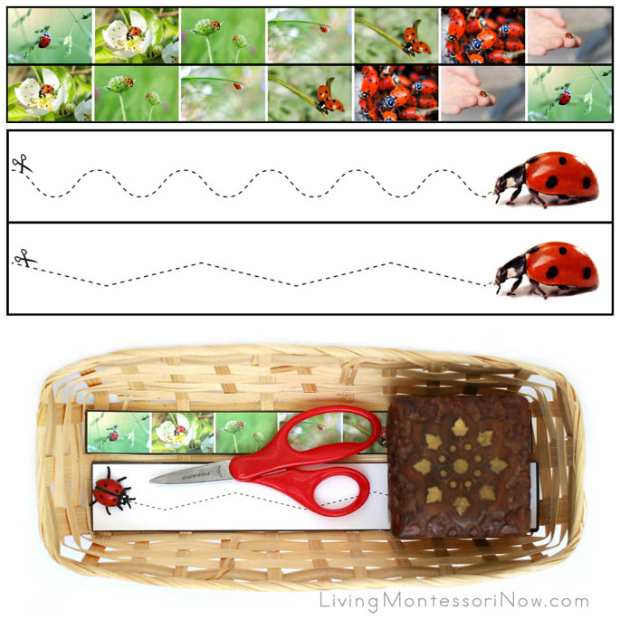 Ladybug Cutting Strips with Basket