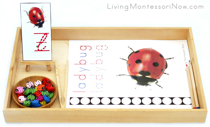 Ladybug Letter L Do-a-Dot Printable and Wooden Ladybug Transfer