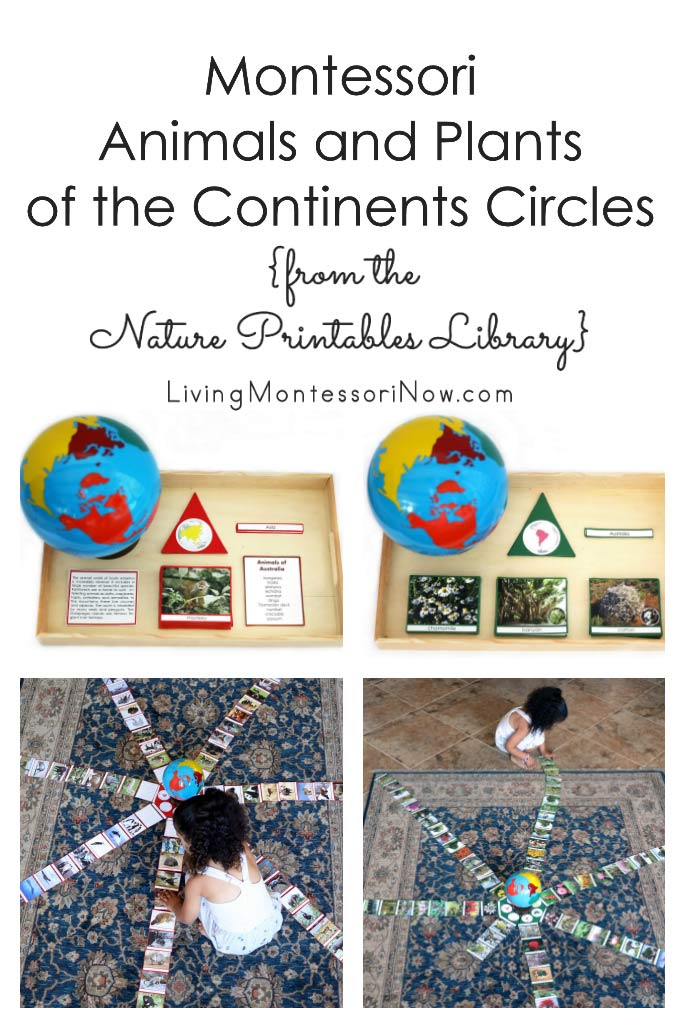 Montessori Animals and Plants of the Continents Circles from the Nature Printables Library