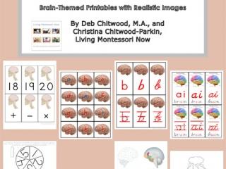Montessori-Inspired Brain Pack