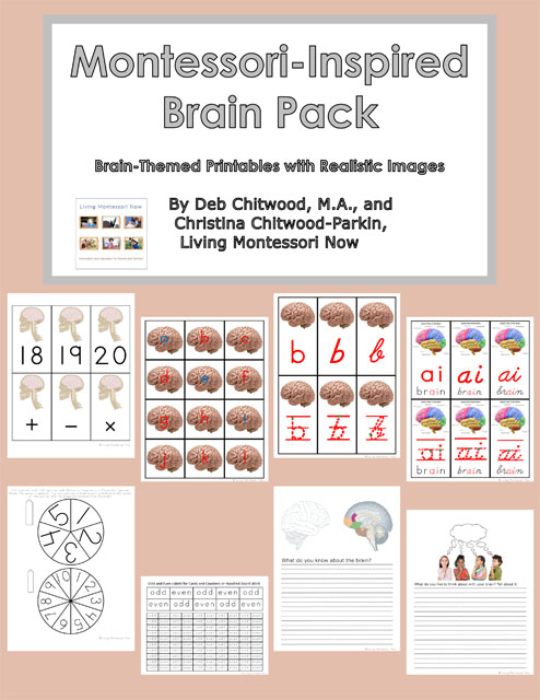 Montessori-Inspired Brain Pack