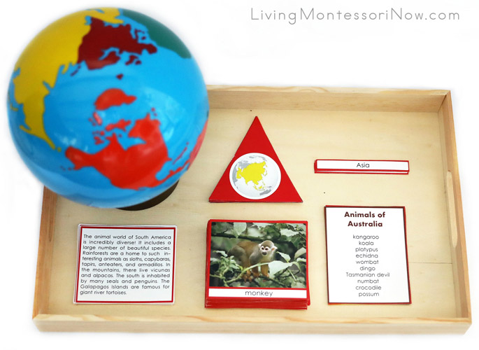 Montessori Tray with Materials for the Animals of the Continents Circle