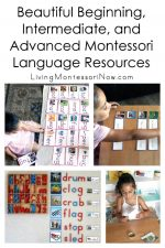 Beautiful Beginning, Intermediate, and Advanced Montessori Language Resources (Including Pink, Blue, and Green Series)