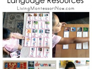 Beautiful Beginning, Intermediate, and Advanced Montessori Language Resources (Including Pink, Blue, and Green Series) in Manuscript or Cursive