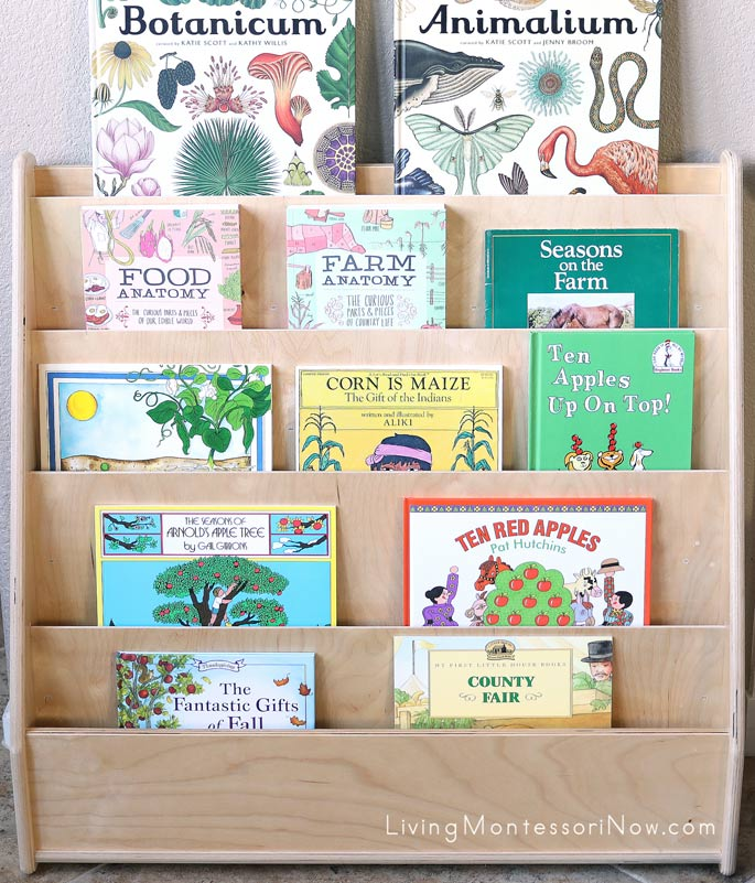 Front-Facing Bookshelves with Books for a Mini Fall Unit