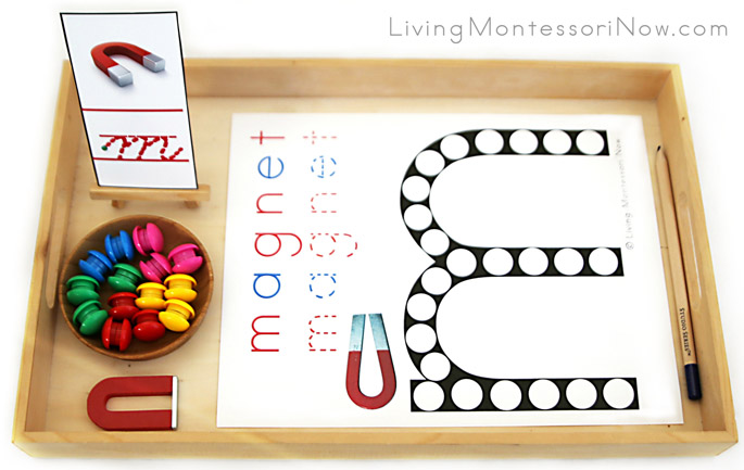 Magnet Do-a-Dot Letter M Tray with Power Magnets