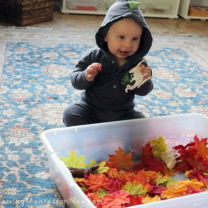At 7 Months Old, Having Fun with Farm Animals in Fall Leaf Sensory Bin Containing Washed Silk Leaves and Farm Animals