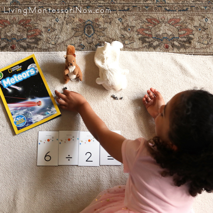 Dividing 6 Pieces of Meteorite Between 2 Stuffed Animals