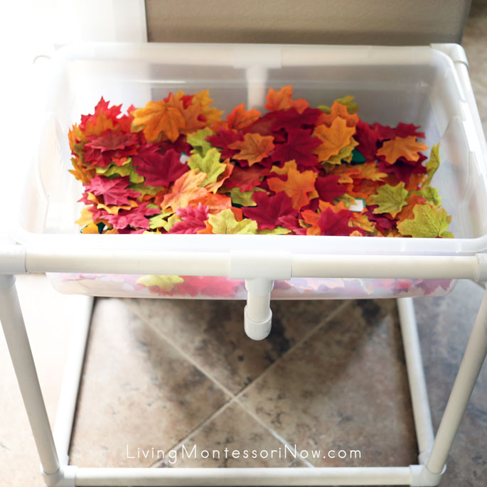 Fall Leaf Sensory Table with Parts of a Leaf Scavenger Hunt