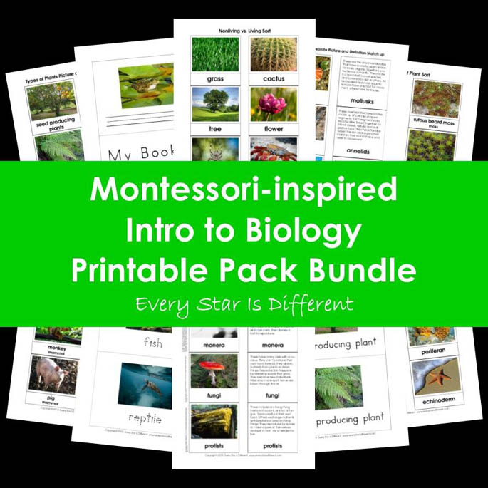 Every Star Is Different Montessori-Inspired Intro to Biology Printable Pack Bundle
