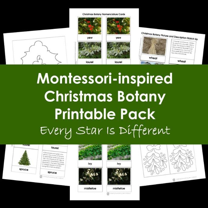 Montessori-Inspired Christmas Botany Printable Pack from Every Star Is Different
