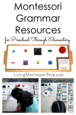 Montessori Grammar Resources for Preschool Through Elementary