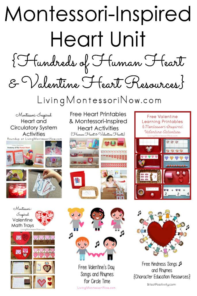 Montessori-Inspired Heart Unit {Hundreds of Human Heart and Valentine Heart Resources}