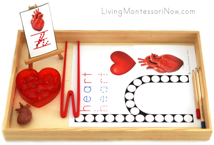 Tray with H for Heart Do-a-Dot Printable and Heart Transfer