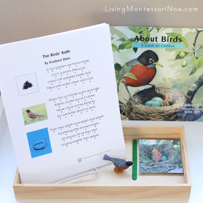 About Birds Book with The Birds' Bath Poetry and Robin from Egg to Bird Tray