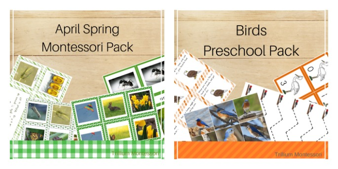 April Spring Montessori Pack and Birds Preschool Pack