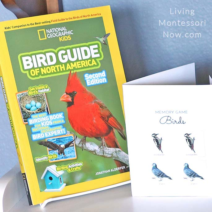 Bird Guide with Bird Memory Game Folder