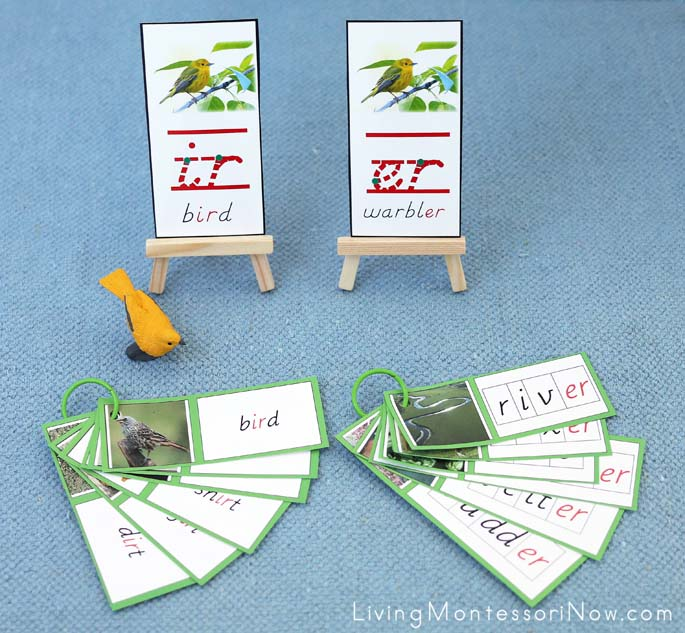 Bird and Warbler Phonogram Cards and Booklets