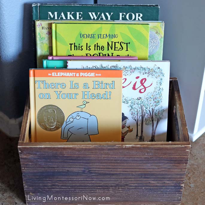 Book Basket with Fiction Books about Birds